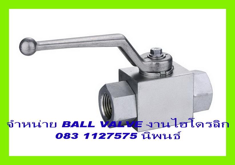 BALL VALVE 1