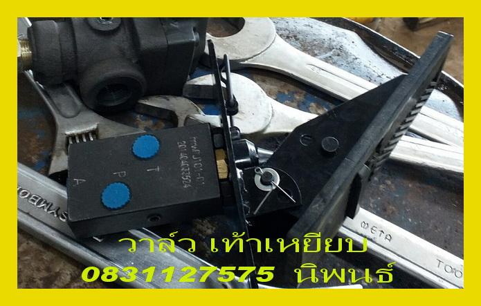 pedal 01